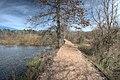 15-09-037, opelofa trail - panoramio.jpg