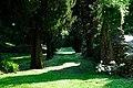 150510 173937 Giardino di Ninfa.jpg