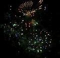 2010 07 14 bastille day fireworks 019 (4839480902).jpg