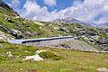 2011-08-02 12-25-45 Switzerland Alp Grüm.jpg