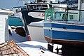 2011 - FEB 12 - 22 - NEWFOUNDLAND -058 Petty Harbour (12) (5455039954).jpg