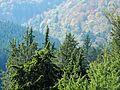 2012-10-19-Kiesental-055.jpg
