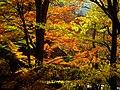 2014-11-24 Sekiganji 石龕寺 DSCF4747.jpg