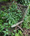 2016-06-21 Gartenstuhl Moroder - 4565.jpg