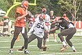 2016 Cleveland Browns Training Camp (28614327621).jpg