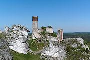 20170528 Zamek w Olsztynie 6797.jpg