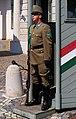 20190502 Guard of Sándor Palace - Budapest - 1102 2032 DxO.jpg