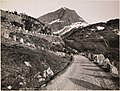 28567. Grotli - Geirangerveien (6799964206).jpg