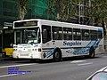294 Sagales - Flickr - antoniovera1.jpg