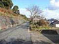 3 Chome Ōnohara, Hatsukaichi-shi, Hiroshima-ken 739-0441, Japan - panoramio.jpg