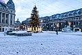 4 ianuarie 2015, Bucuresti, Parcul Al I Cuza, Canon 7D Mark II-5523 (16107371297).jpg