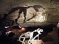 57. Skeleton shadow, Victoria Fossil Cave, Naracoorte.jpg