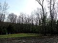 5 acre looking Southwest (4470661606).jpg