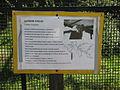A Silesian Zoological Garden 58.JPG