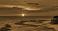 A late swim during sunset, Barbados (6935821963).jpg