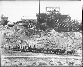 George Wingfield - Image: A team of 12 horses hauling three wagons full of ore, Goldfield, Nevada, ca.1905 (CHS 5429)