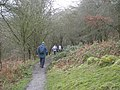 A walk in the rain - geograph.org.uk - 1197244.jpg