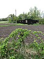 A well-tended vegetable plot - geograph.org.uk - 785755.jpg
