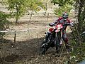 Aarón Bernárdez - 2008 WEC GP of Italy.jpg
