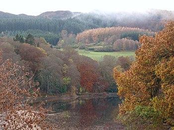 English: Across Faskally. Looking across Loch ...