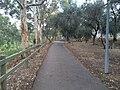 Adelaide SA 5000, Australia - panoramio (17).jpg