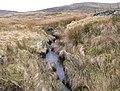Afon Rhydyrhalen - geograph.org.uk - 1170720.jpg