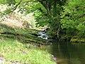 Afon Twrch - geograph.org.uk - 959348.jpg
