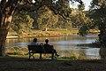 Afternoon light Centennial Park 006.jpg