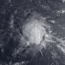 Satellite image of the relatively weak Tropical Storm Alex