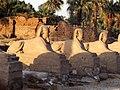 Allée des Sphynx temple de Karnak à Louxor (145247669).jpg