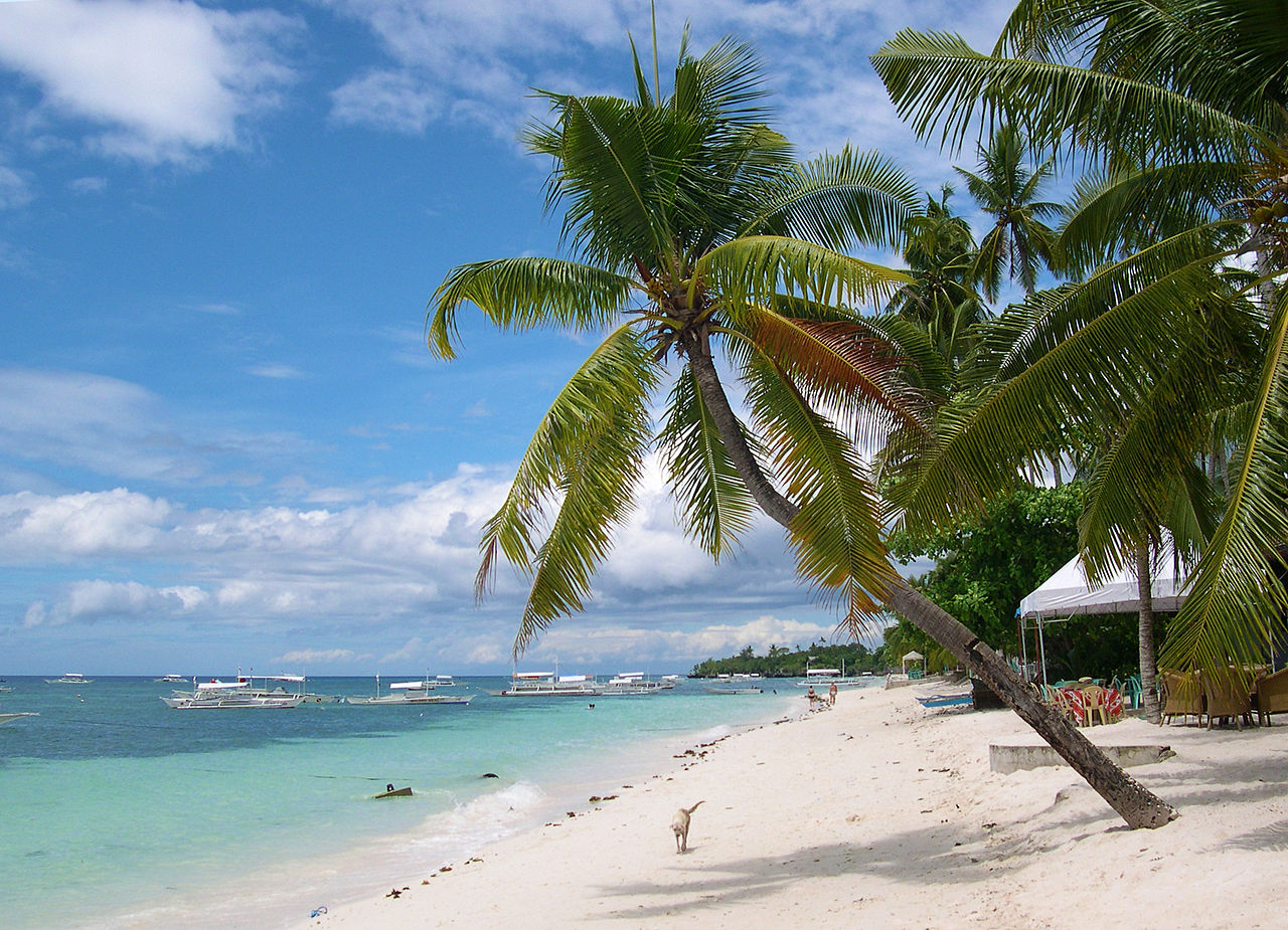 「パングラオ島」の画像検索結果