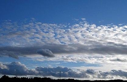 Altocumulus and cumulus over Gåseberg.jpg