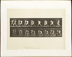Animal locomotion. Plate 342 (Boston Public Library).jpg