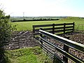 Animal pens near Middle Taphouse - geograph.org.uk - 492362.jpg