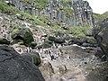 Antipodes Penguin.JPG