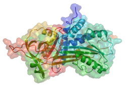 Α-1-Antitrypsin