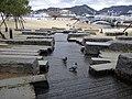 Aqua Garden - panoramio (14).jpg