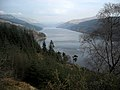 Ardgartan Forest and Loch Long - geograph.org.uk - 1285846.jpg