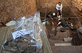 Arqueologia na Cúria (8573277160).jpg