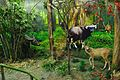 Artificial Forest - Resources of Jharkhand Gallery - Ranchi Science Centre - Jharkhand 2010-11-27 8081.JPG