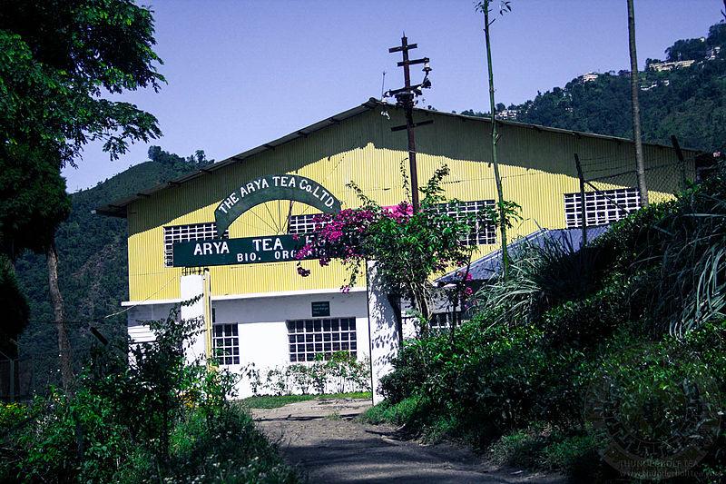 File:Arya-tea-estate-by-thunderbolt-tea.jpg