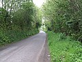 Ash Lane - geograph.org.uk - 455300.jpg