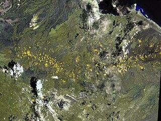 Assab volcanic field.jpg