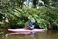 Auray (River)LeLochAmont de la Rivière d'AurayAout2018MorbihanLamiotMFL 10.jpg