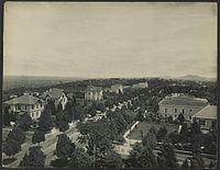 Cart�o postal da Avenida Paulista vista da resid�ncia de Adam Von B�low em 1902. Foto por Guilherme Gaensly