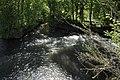 Bèze river in Vonges 1.JPG