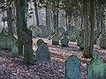 Bad Rappenau - Heinsheim - Jüdischer Friedhof - Grabsteine im Gegenlicht 2.jpg