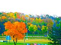Baer Park in Autumn - panoramio.jpg