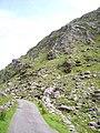 Ballaghbeama Gap - geograph.org.uk - 292570.jpg