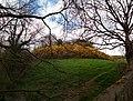 Ballyfoyle Moate (Co. Kilkenny) in spring.jpg